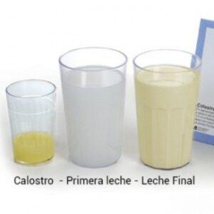 mi leche materna composicion 300x300 - mi-leche-materna-composicion